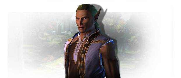 Neverwinter Elfy